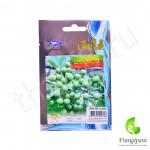 Семена тайских круглых гороховых баклажанов
